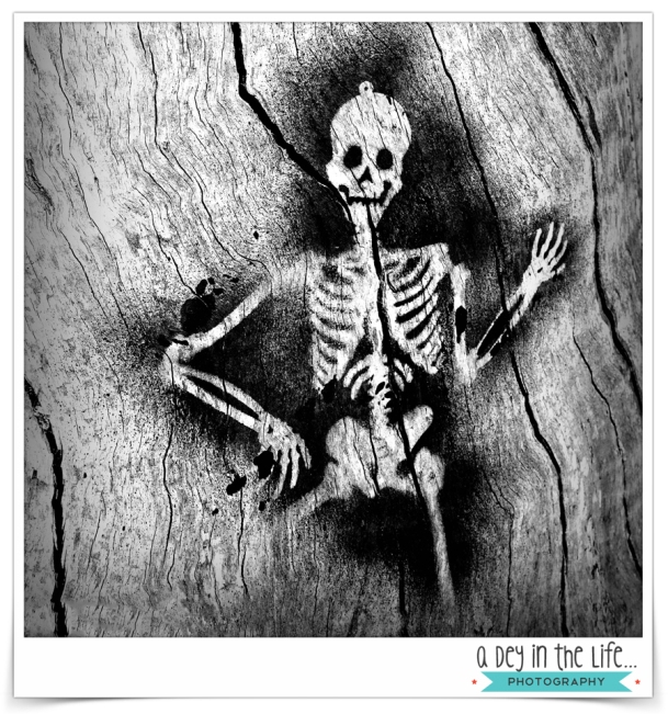 SkeletonBlog