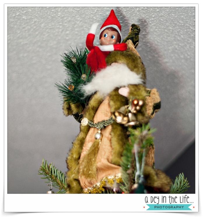 Dec16_2013Blog