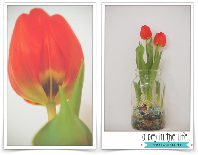 ValentinesBlog